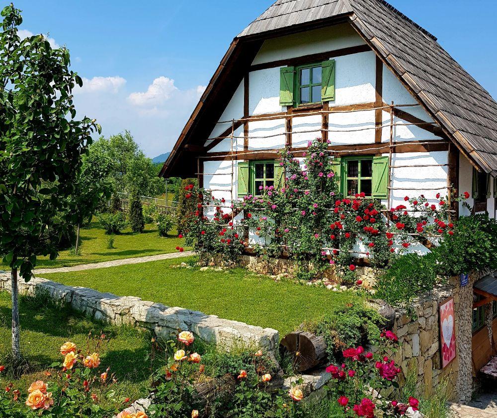 色鮮やかな植物が印象的なお庭の家