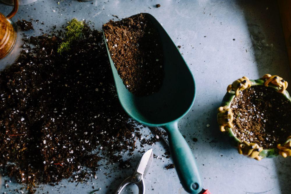 肥料の入った土