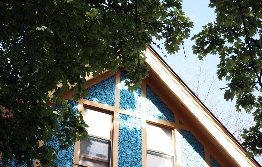 木の生い茂る家