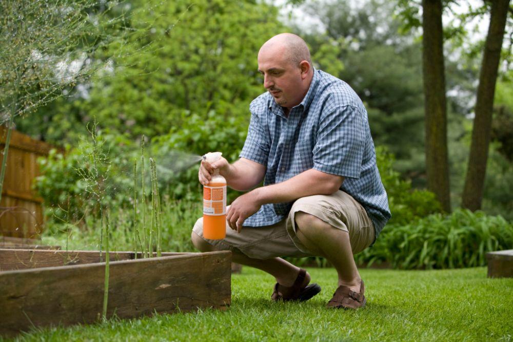 植物に肥料を与えている様子
