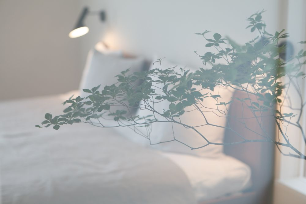 窓越しのベッドルーム