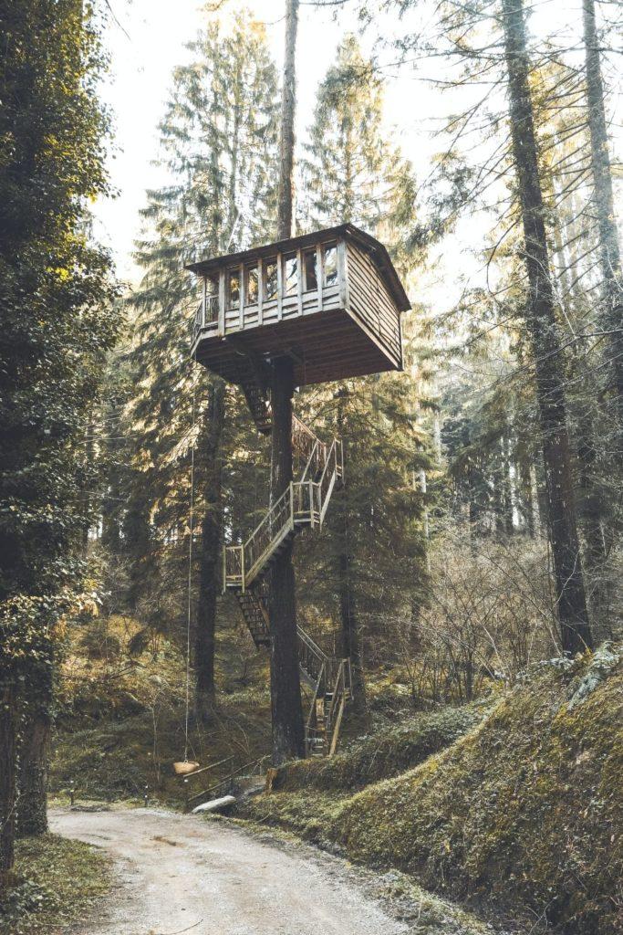 高さのあるツリーハウス