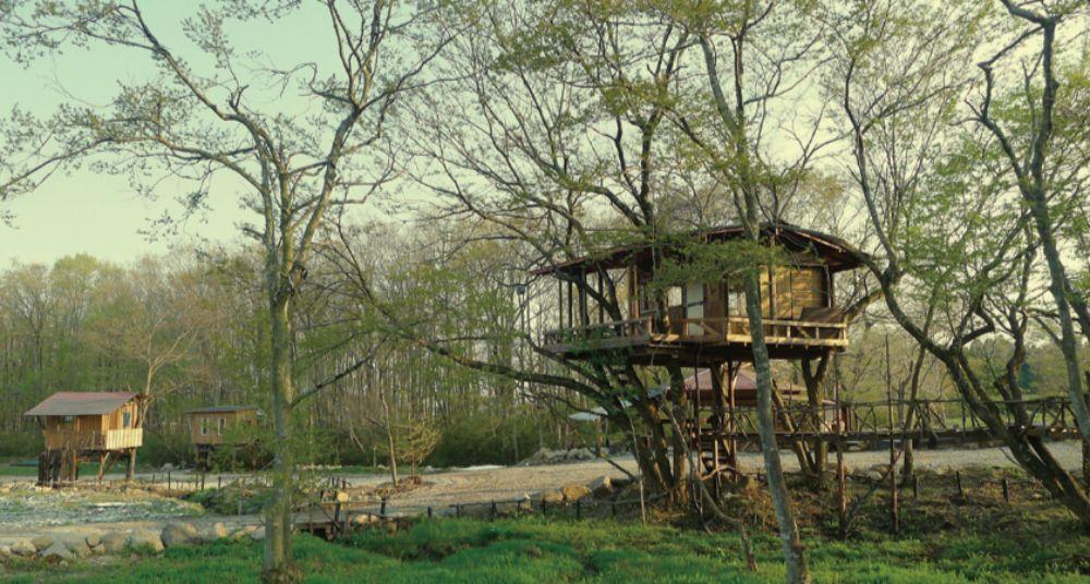 ツリーハウスvillageおだぎりガーデンのツリーハウス