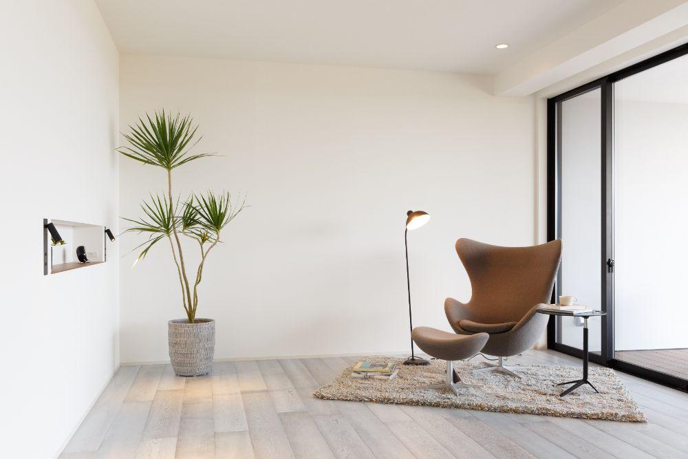 観葉植物の置かれた部屋
