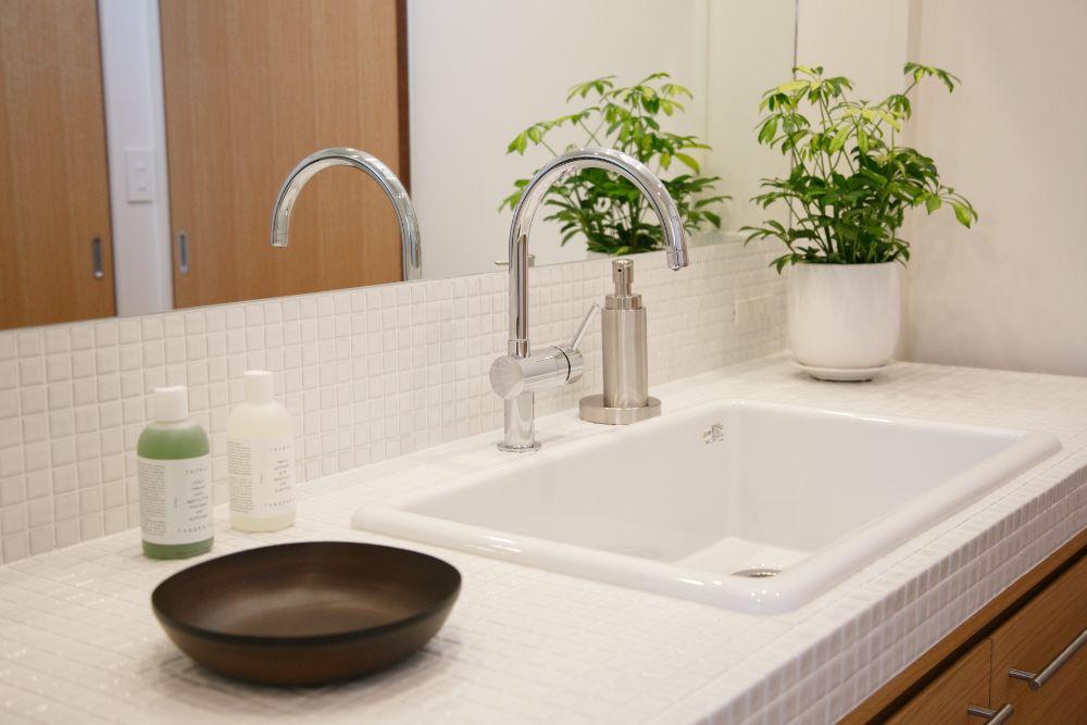 植物の置かれたきれいな洗面