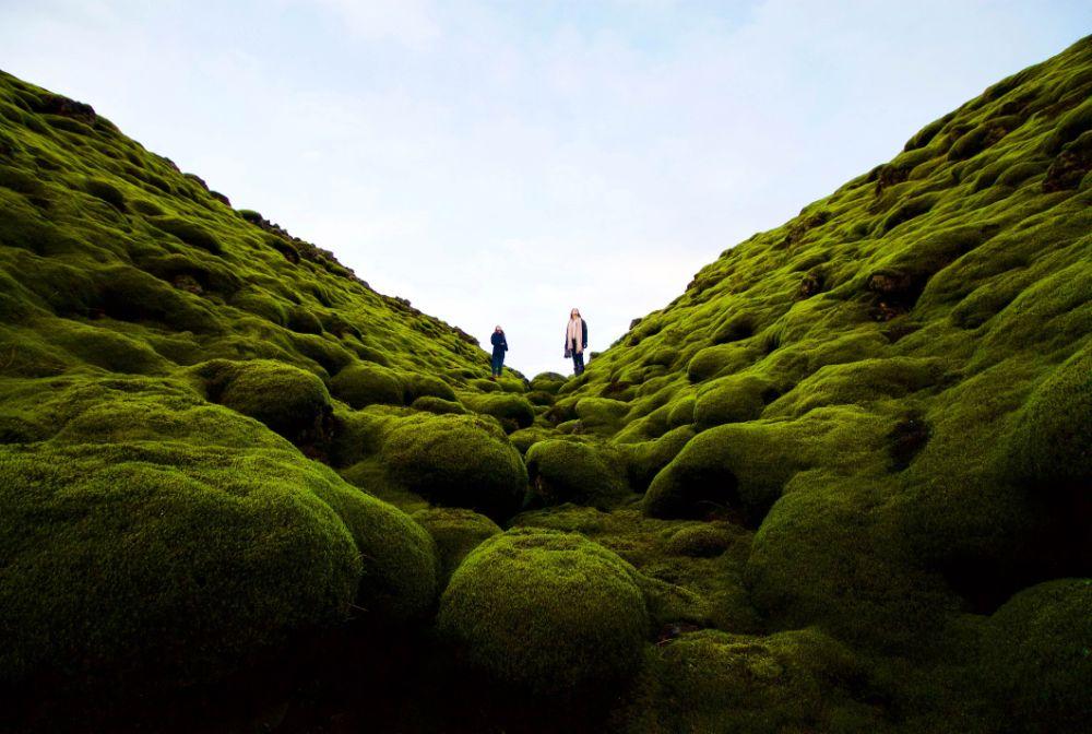 苔に覆われた岩の上に立つ人間