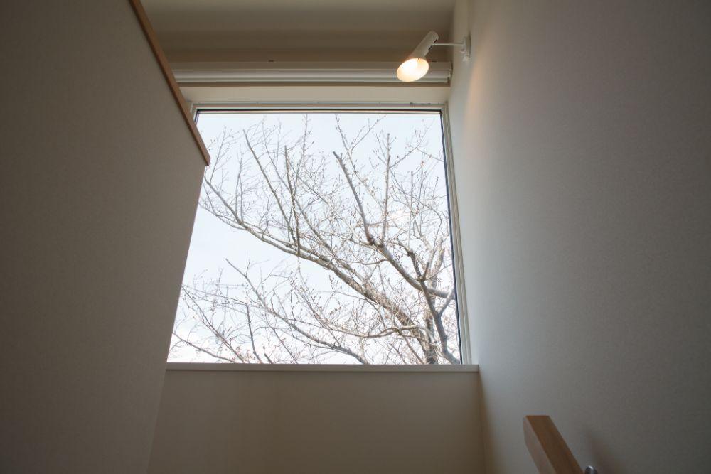 階段から見える窓の景色