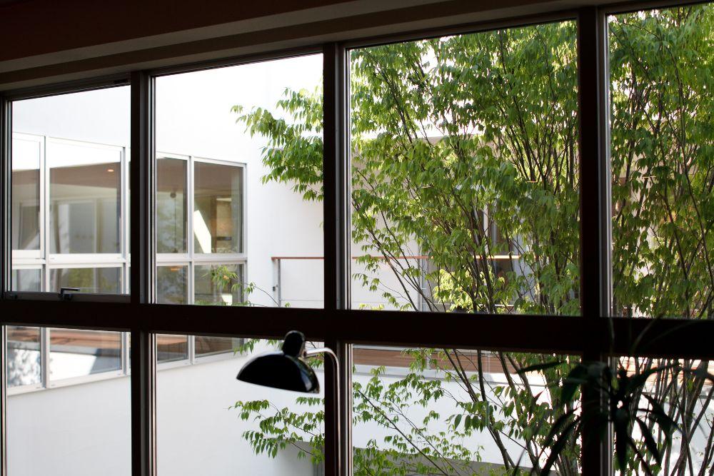 中庭に面した窓