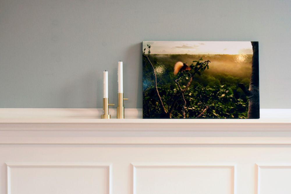 壁の出っ張りに飾られた写真