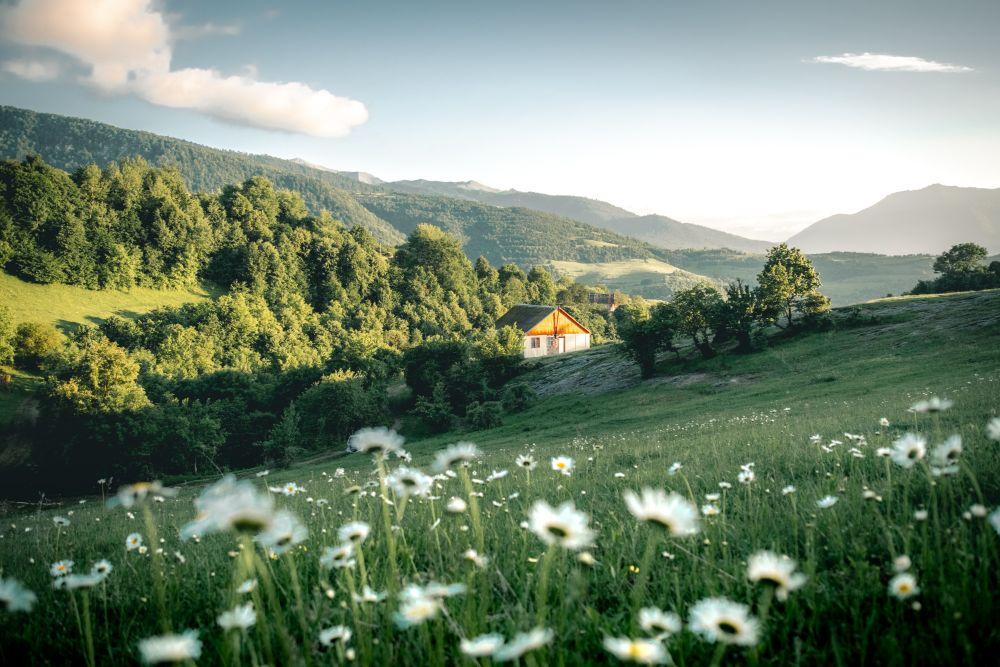 自然豊かな場所に立つ家
