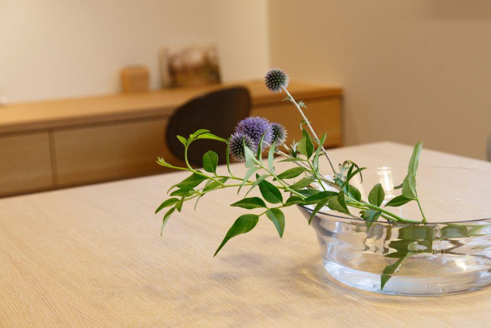 ガラスの器にはいいている植物